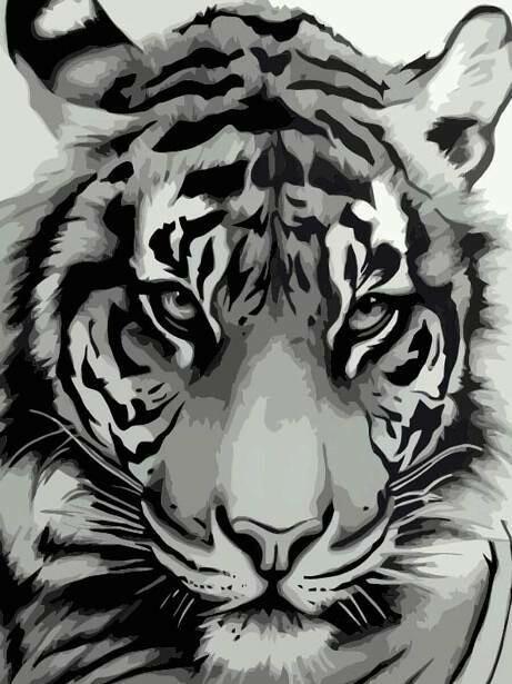Картина по номерам (40х50см) Цветной MG2123 Мудрый взгляд