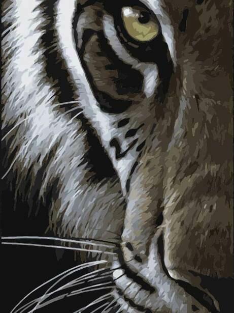 Картина по номерам (40х50см) Цветной MG2124 Хищный взгляд