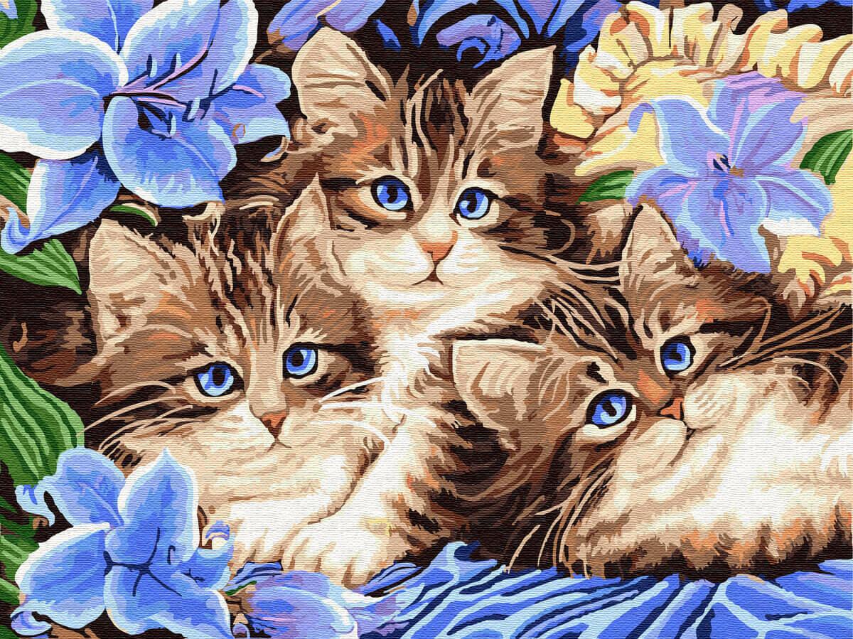 Картина по номерам (30х40см) Цветной EX5689 Котята в цветах