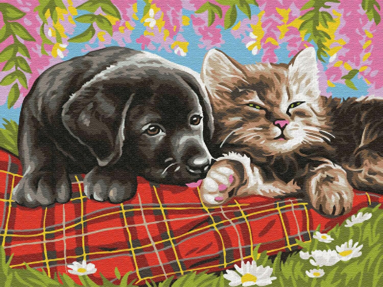 Картина по номерам (30х40см) Цветной EX5784 Новые друзья