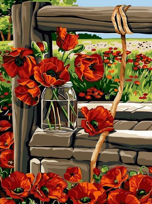 Картина по номерам (30х40см) Цветной EX5273 Маки у колодца
