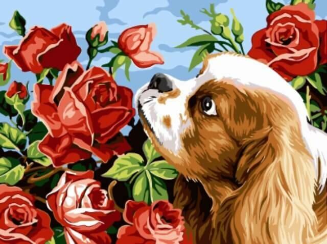 Картина по номерам (30x40см) Цветной EX5257 Щенок и розы