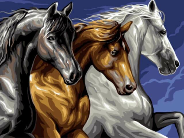 Картина по номерам (30х40см) Цветной EX5268 Тройка лошадей