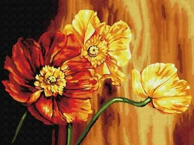 Картина по номерам (30х40см) Цветной EX5696 Знойные цветы