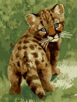 Картина по номерам (30х40см) Цветной EX5801 Маленький леопард