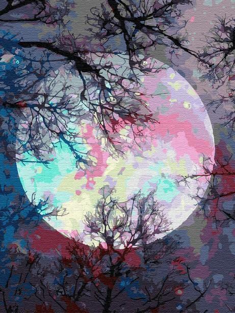 Картина по номерам (30х40см) Цветной EX6362 Неоновая луна