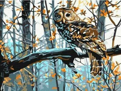 Картина по номерам (30х40см) Цветной EX5021 Мудрая сова
