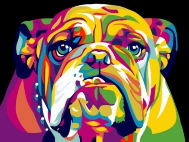 Картина по номерам (30х40см) Цветной EX5371 Радужный американский бульдог