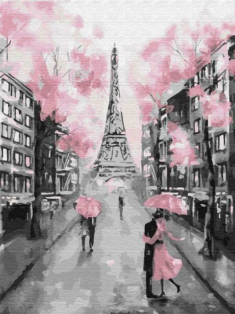 Картина по номерам (30х40см) Цветной EX6257 Гламурный Париж
