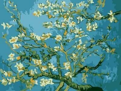 Картина по номерам (30х40см) Цветной EX5216 Цветы миндаля