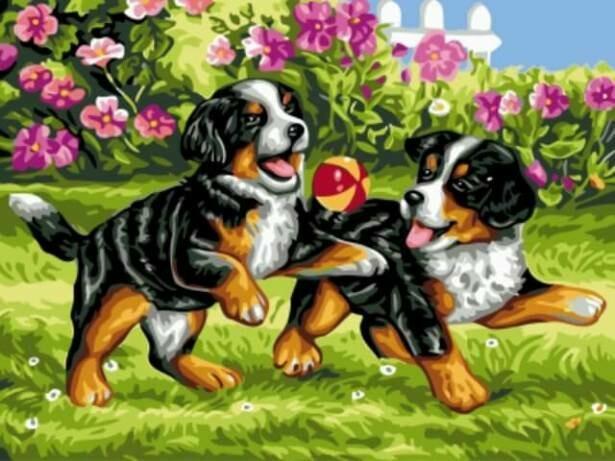 Картина по номерам (30х40см) Цветной EX5264 Озорные щенки