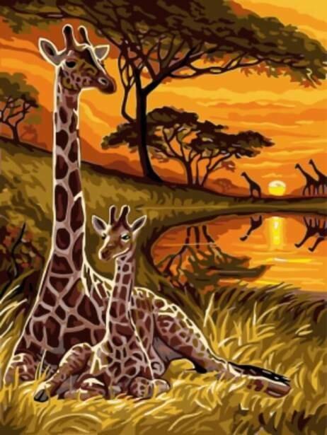 Картина по номерам (30х40см) Цветной EX5287 Сафари