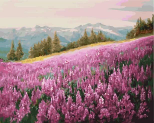 Картина по номерам Цветной (40х50см) GX5784 Розовое поле