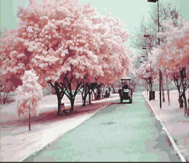 Картина по номерам (40х50см) Цветной MG540 Розовое настроение