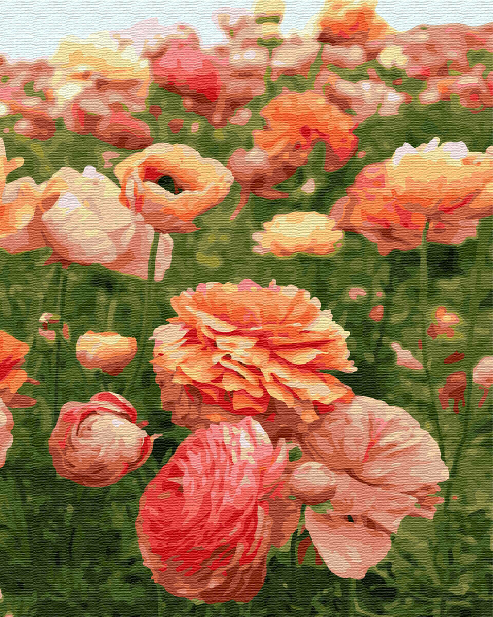 Картина по номерам(40х50см) Цветной GX30927 Нежный цветок