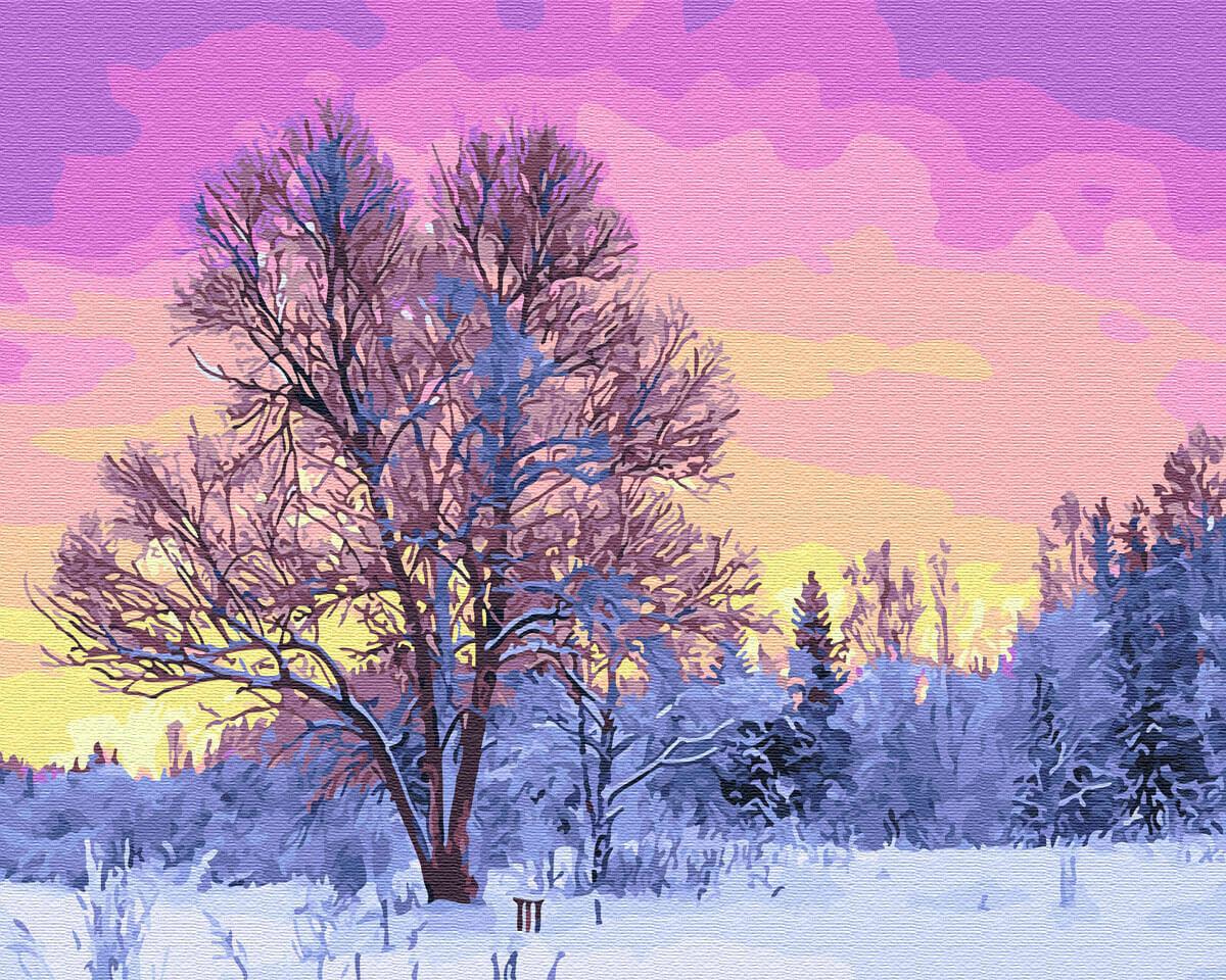 Картина по номерам (40х50см) Цветной GX28728 Пурпурное утро