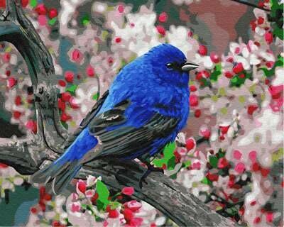 Картина по номерам (40х50см) Цветной GX23193 Синяя птица