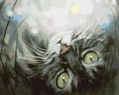 Картина по номерам (30х40см) Цветной ME1074 Кошечка в мечтах