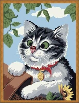 Картина по номерам (30х40см) Цветной ME085 Любопытный котенок
