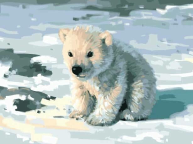 Картина по номерам (30х40см) Цветной EX5758 Милый медвежонок