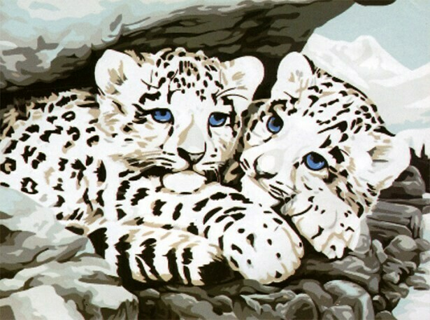 Картина по номерам (30х40см) Цветной ME049 Ягуарята