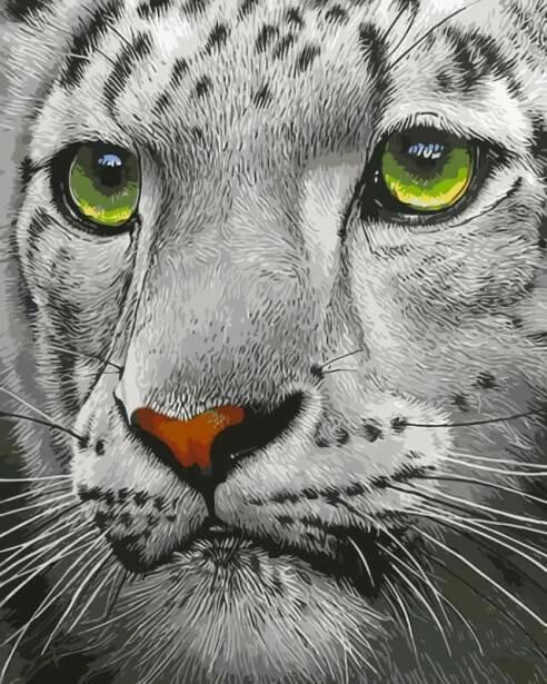 Картина по номерам (30х40см) Цветной ME1072 Белый тигр
