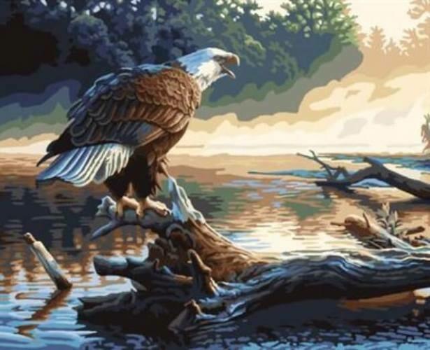 Картина по номерам (40х50см) Цветной GX6736 Орел на дереве
