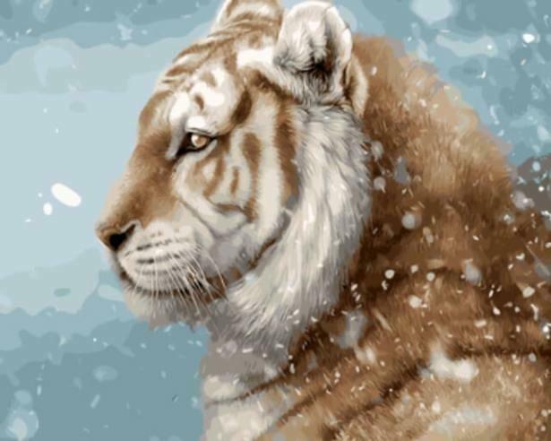 Картина по номерам (40х50см) Цветной GX9641 Тигр