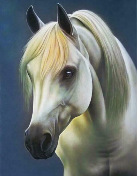 Набор алмазной вышивки (40х50см) Цветной LG065 Белая лошадь