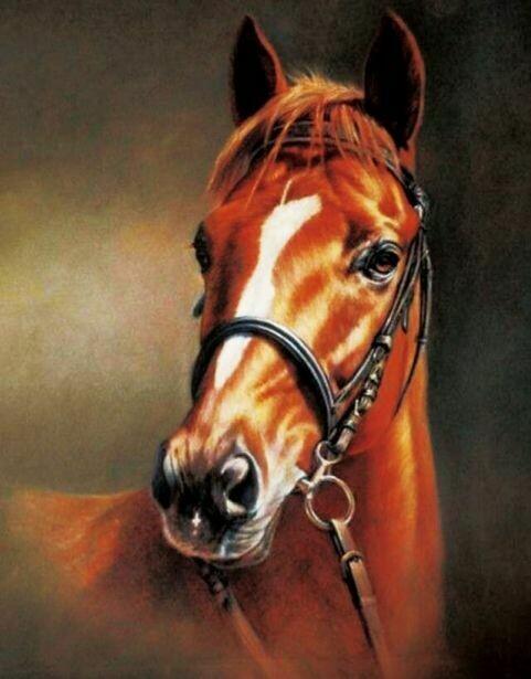 Набор алмазной вышивки (40х50см) Цветной LG014 Каштановая лошадь