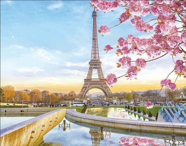 Набор алмазной вышивки (40х50см) Цветной LG194 Цветущий Париж