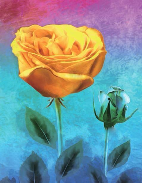 Набор алмазной вышивки (40х50см) Цветной LG227 Желтая роза