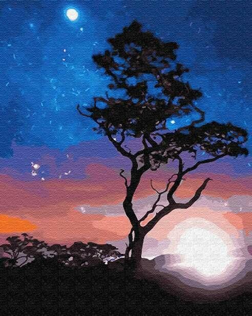 Картина по номерам (40х50см) Цветной GX23214 В звёздном сиянии