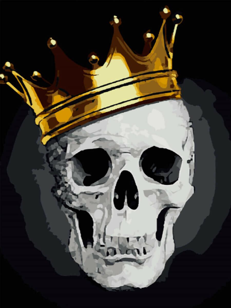 Картина по номерам (40х50см) Цветной MG2143 Стильный череп
