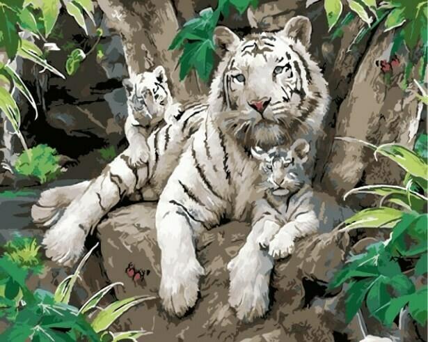 Картина по номерам (40х50см) Цветной MG6046 Белые тигры