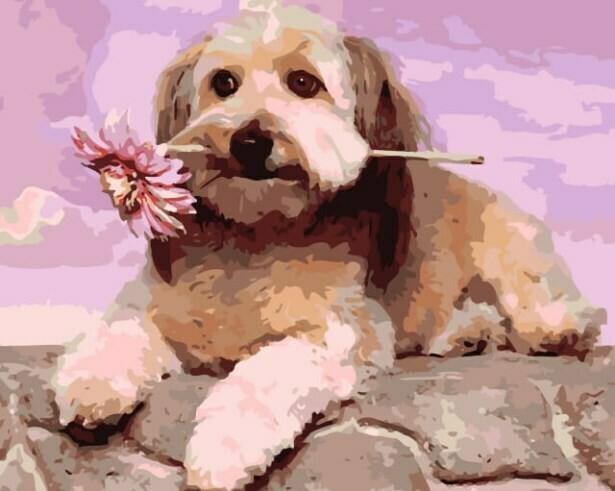 Картина по номерам (40х50см) Цветной MG6087 Подарок хозяйке
