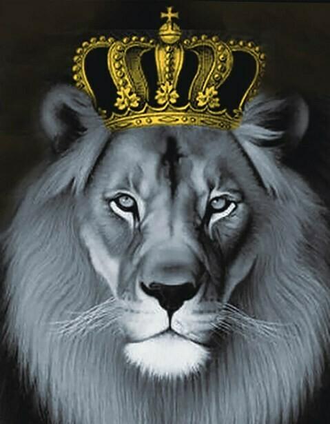 Набор алмазной вышивки (40х50см) Цветной LG235 Лев с золотой короной