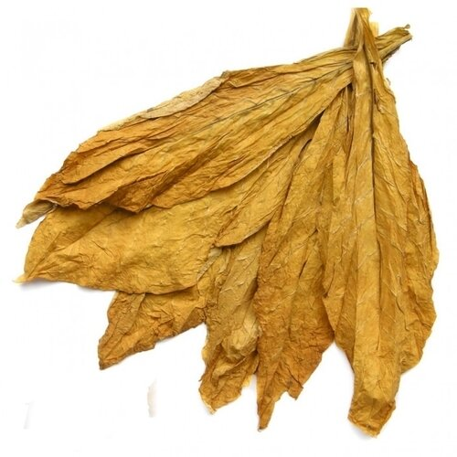 VIRGINIA (aroma)