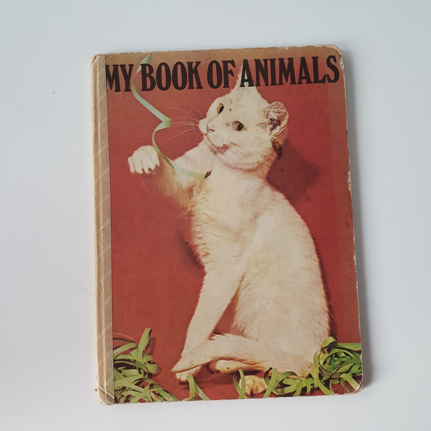 My Book of Animals vintage cats / kittens 1970s