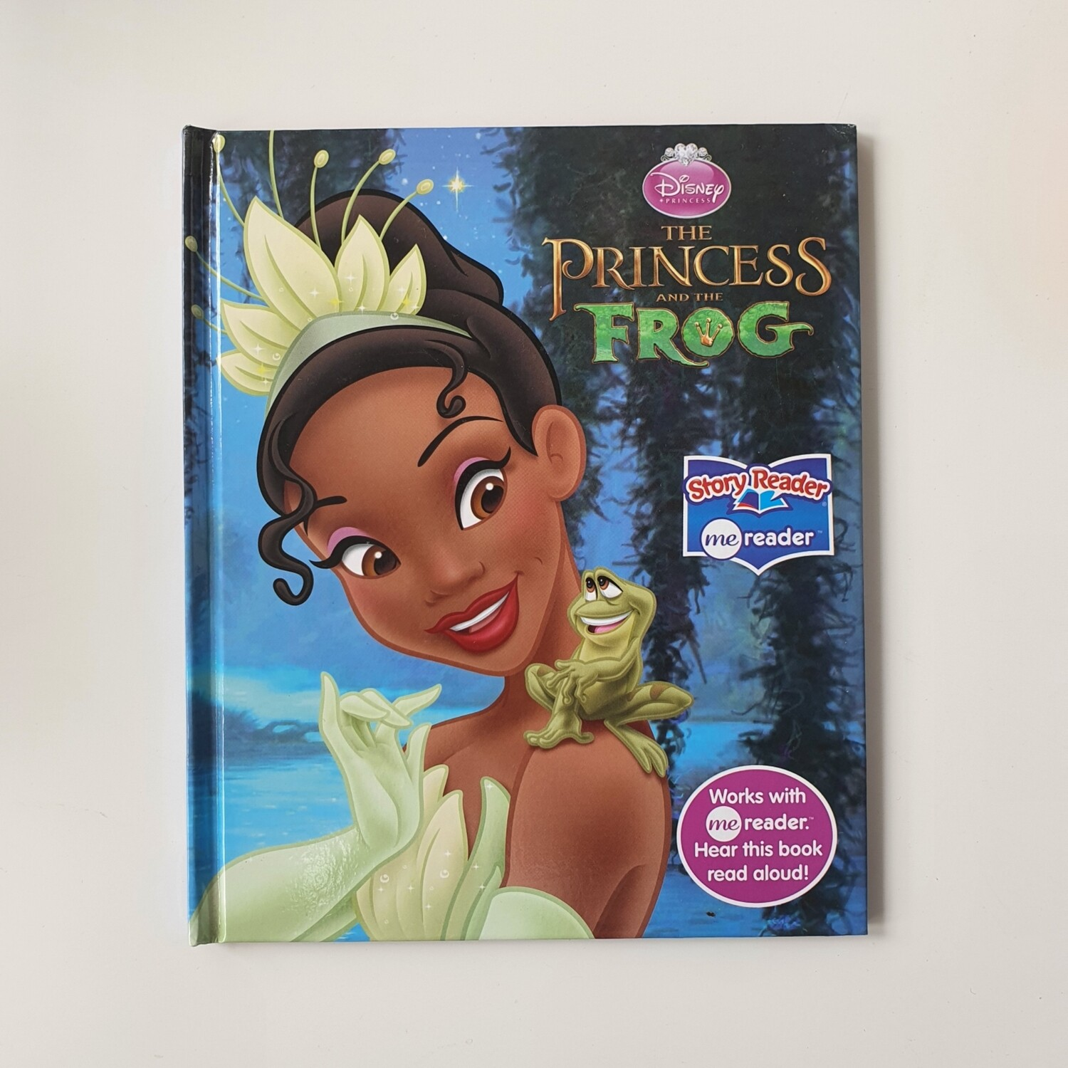 Princess and the Frog Notebook - no original book pages included