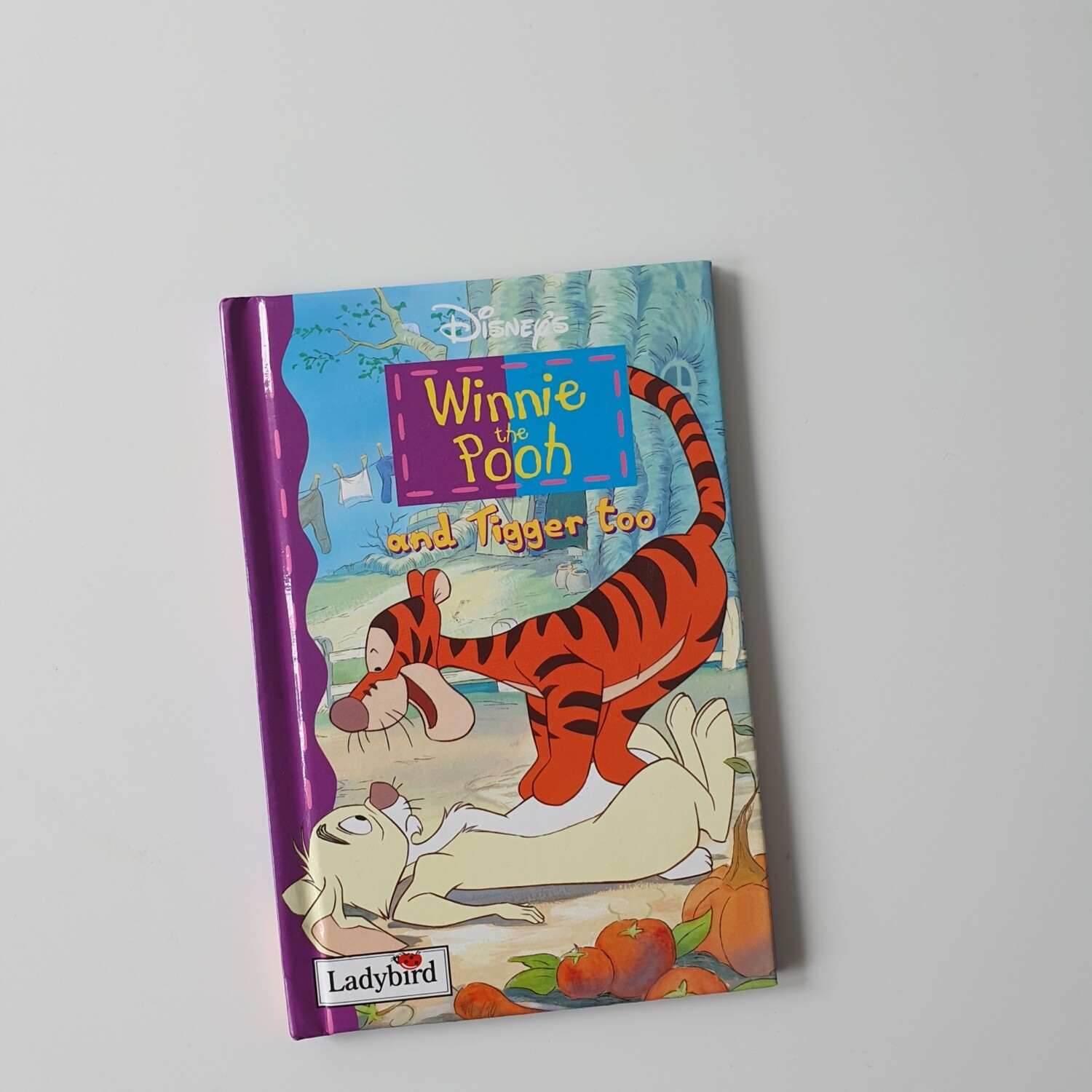 Winnie the Pooh Notebook and Tigger Too