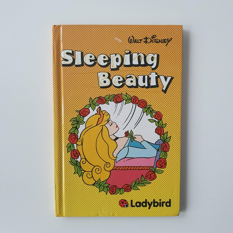 Sleeping Beauty Notebook