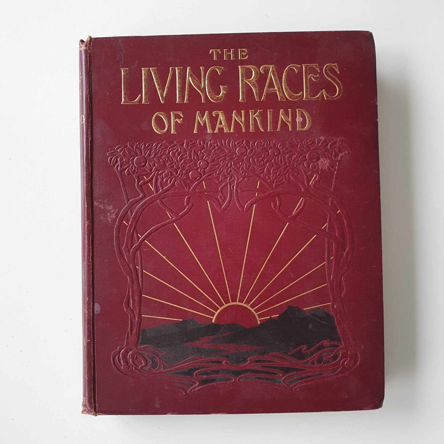 The Living Races of Mankind - vintage book
