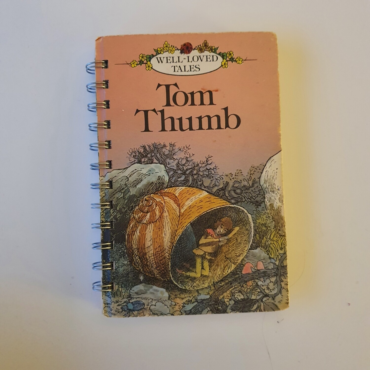 Tom Thumb Plain Paper notebook - READY TO SHIP Ladybird Book