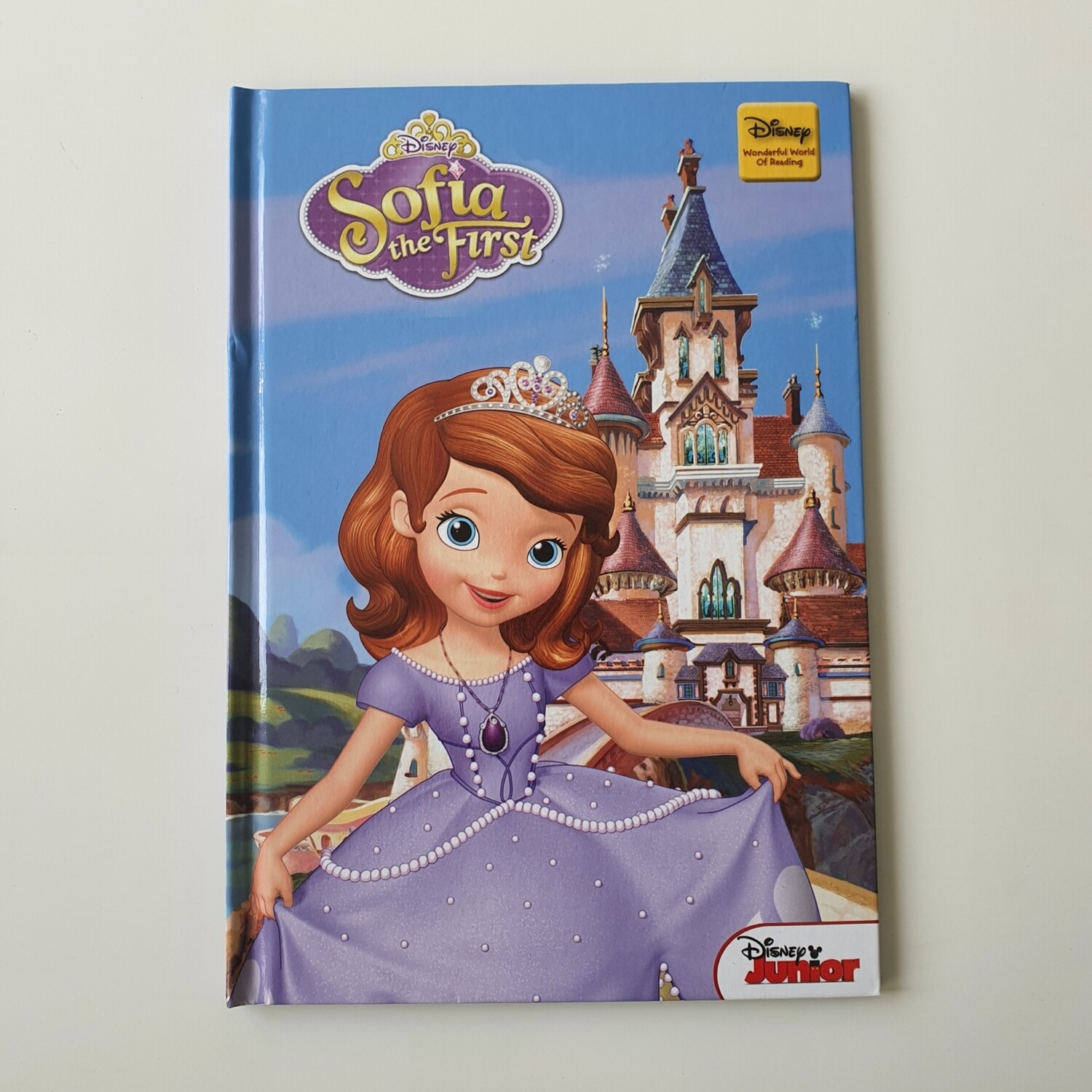 Sofia the First Notebook