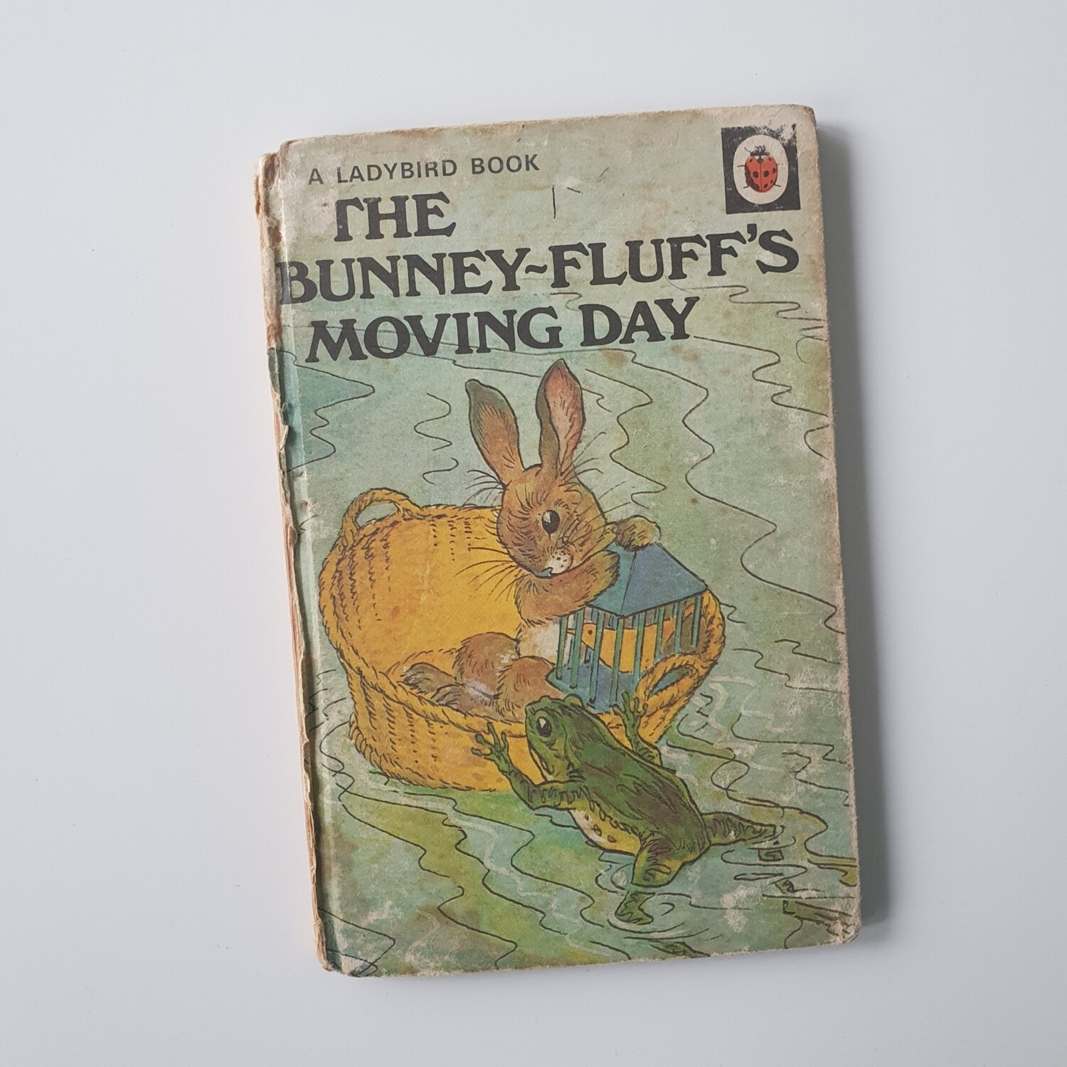 Bunney Fluff's Moving Day Notebook - new home