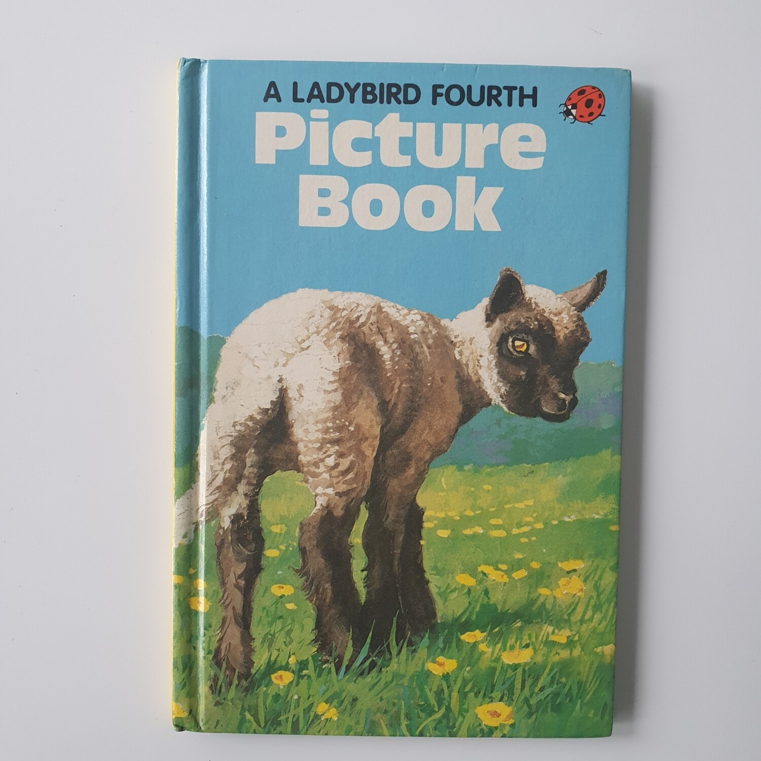 Lamb picture book Plain Paper notebook - READY TO SHIP Ladybird Book