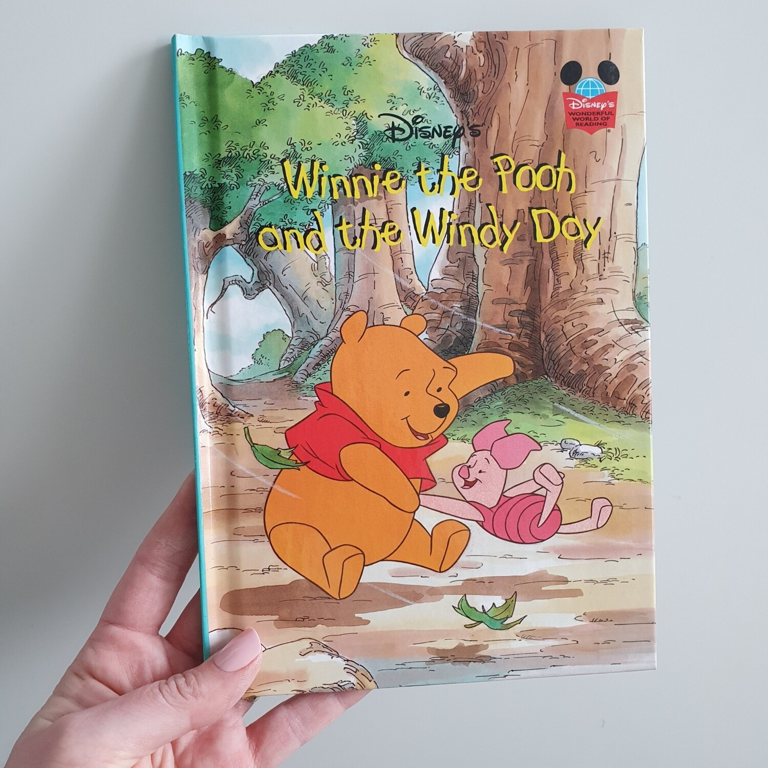 Winnie the Pooh's Windy Day Notebook