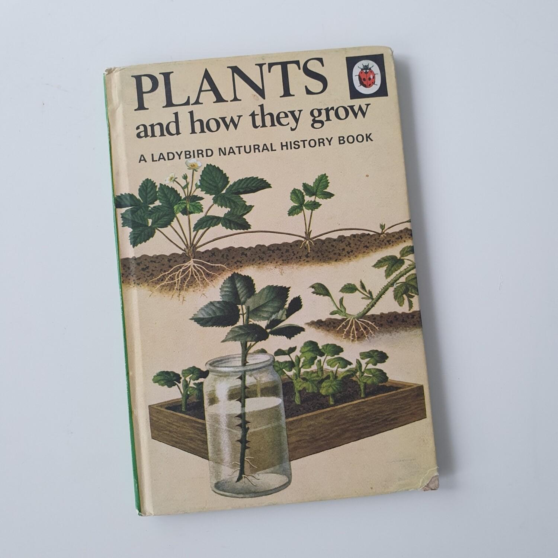 Plants Notebook - Ladybird book