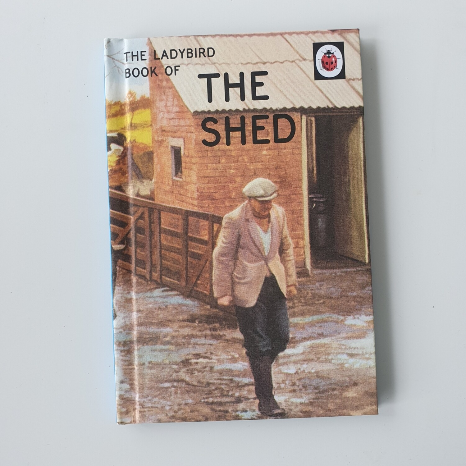 The Shed - Ladybird book